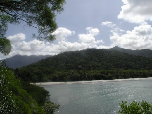 The rugged Cape Tribulation