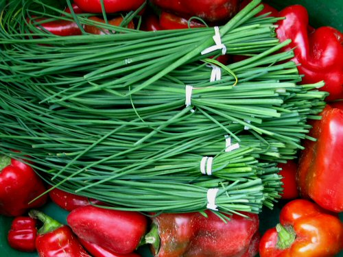 Fresh Chives and Red Pepers paint a tasty picture