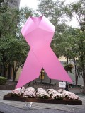 Stirring Up Controversy with Breast Cancer Screening