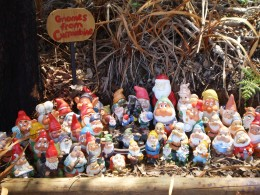 Cute gnomes at Gnomesville.