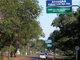Tree line boulevard