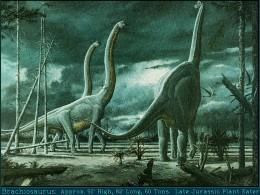 Brachiosaurus = Behemoth?