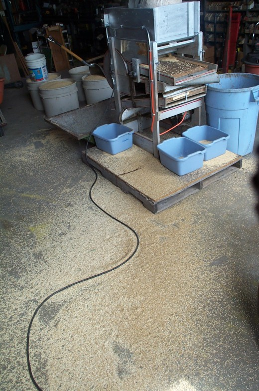 A series of tubs, a hopper, and a barrel catch the finished grain and debris. The tubs at the back (facing us) are to catch spillovers, and their contents will be run through again. The grain on the floor can be swept back up and run through.