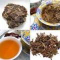 King of Tea: Curative and Preventive Powers of Pu-erh Tea