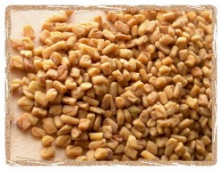 Fenugreek seeds make good conditioner