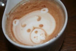 The Barista's Teddy BEar