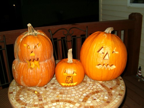 The group of pumpkins, all together.