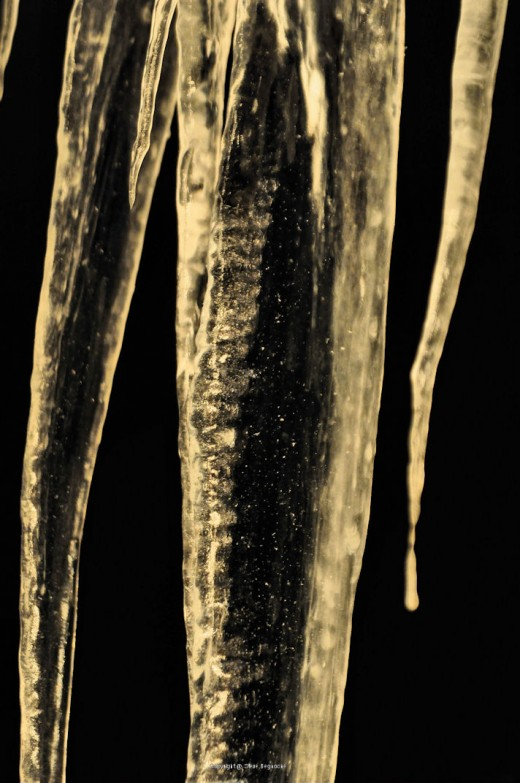 Icicles capture light from the porch that shows how clear they are. Look closely and see the ribbing that is left by the melting and freezing process that creates icicles.