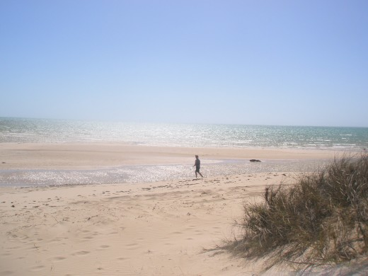 The beaches and shores around Coral Bay provide some excellent opportunities for walking, relaxing and observing wildlife.