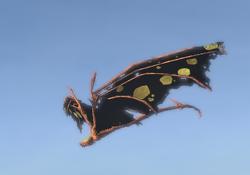 Mothrakk