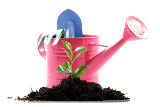 Get some exercise and fresh air, plant a herb garden!