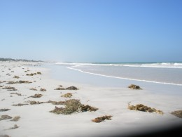 In Western Australia, 2009 brought the second highest average maximum daily temperature of 30.3 C.