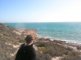 Looking for turtles. There are three known species of turtles in the Ningaloo Reef, the Green, Loggerhead and Hawksbill.