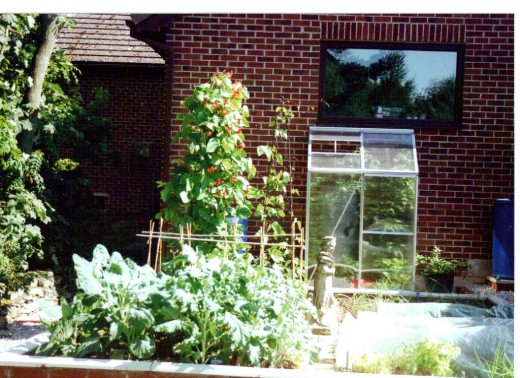 Brick Wall Raised Gardens Beds: First Year's Crop