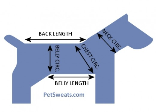 Figure 1: Where to Measure Your Dog