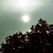 lumen2light profile image