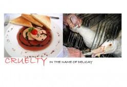 Foie Gras– Delicacy or Cruelty???