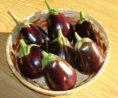Aubergine, known as Banjan in Afghanistan.