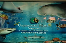 underwater world Singapore