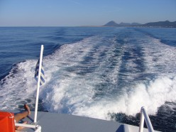 photo, taken on a day boat trip while visiting an island in Greece.