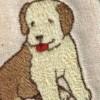 animal_princess profile image