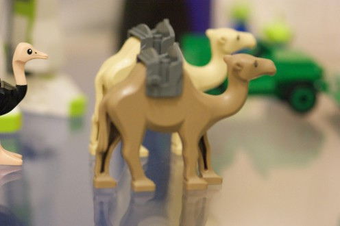 The wonderful Lego Camel
