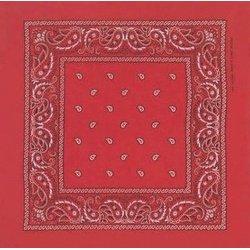 Red Paisley Bandana by Bandana Fever