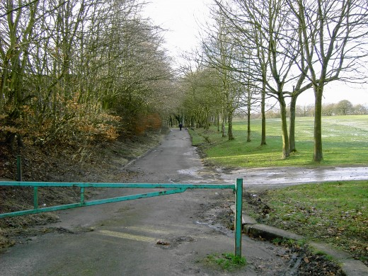 The lane in dressed in its dreary winter garb
