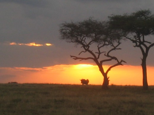 Sun setting over the Mara