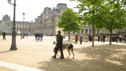 Dog walking in the Tuilleries, April 2008