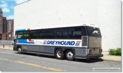 Greyhound USA