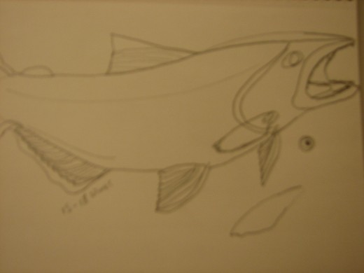 sketch of salmon on fiberboard