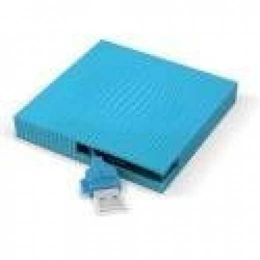 LaCie Skwarim (Blue) Hard Drive- 60GB