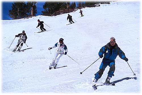 http://scavenging.files.wordpress.com/2009/04/ski-dondiego1.jpg