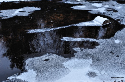 Ice forms growing from the bank towards the center of the creek.