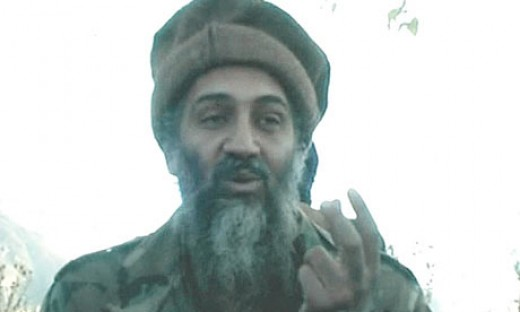 Osama Bin Laden on global warming