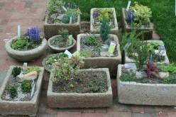 How to Make a Garden Trough