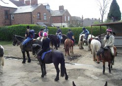 Gertrude Road riding stables in West Bridgford, Nottingham