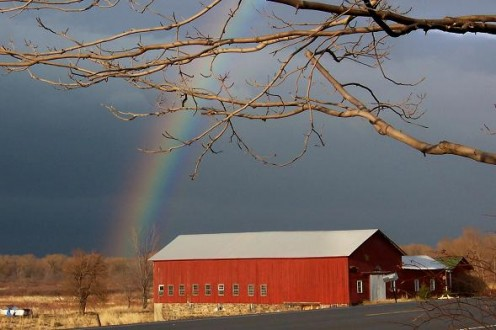Photo of a Red Barn With Rainbow in Back