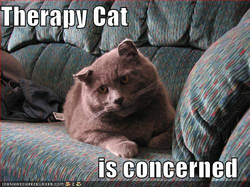 Therapy Cat represents me.