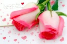 Sending My Love (Khawla Haddad)