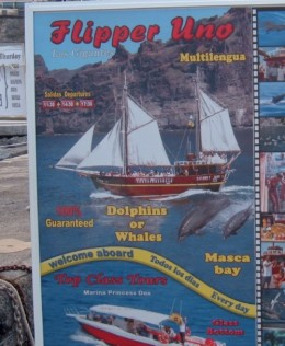 Boat trips sign