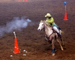Cowboy Mounted Shooting Competitions