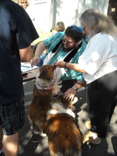 Temple blessing of the animals http://www.insidesocal.com/pets/blessing-of-the-animals/