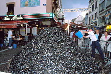 That is a lot of Mussel shells!