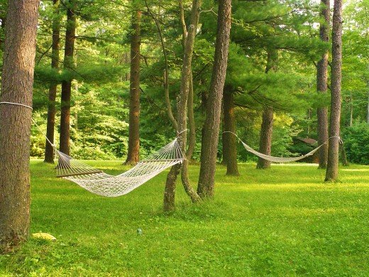 Hammocks for two, havens for reading, napping and just swinging a little.