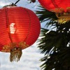 Top Food Traditions To Celebrate The Chinese New Year