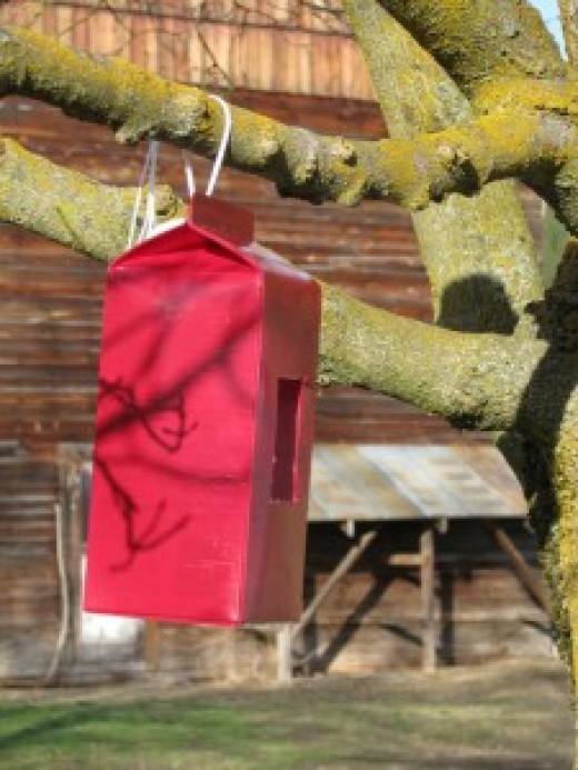 how to make a birdhouse out of a milk jug