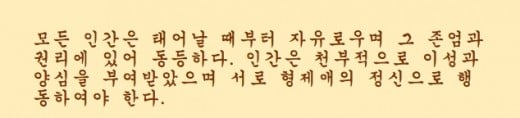 This Hangul text is Article 1 of the Universal Declaration of Human Rights
