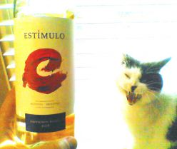Drink From A Jar Guy Wine Review: Estimulo Sauvignon Blanc, A Perfect Wine Gift